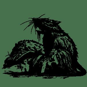 DeanSpencer-filler-ratseating
